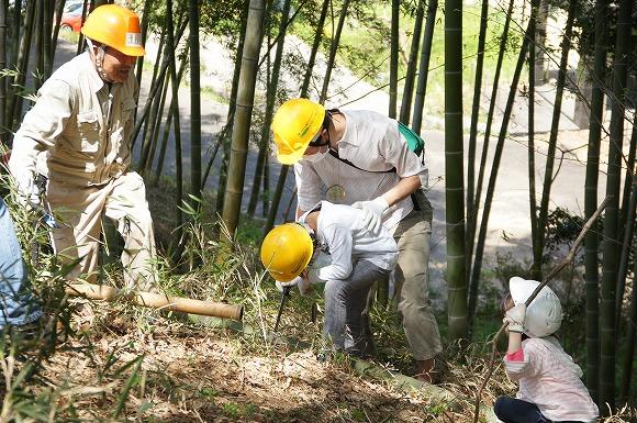 NPO法人樹木・環境ネットワーク協会